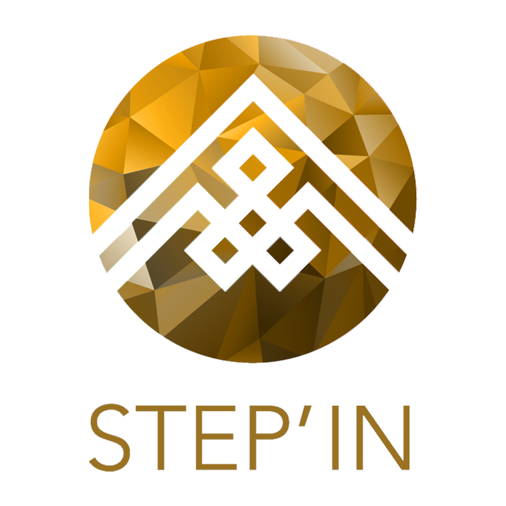 STEPIN-650png